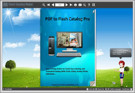 pdf to flash catalog professional introduction demo