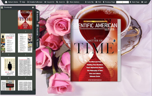Flash Catalog Templates of Tea Style screenshot